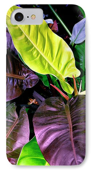 Philodendron IPhone Case by William Dey