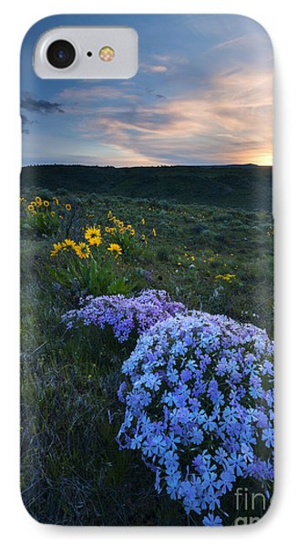 Phlox Sunset IPhone Case