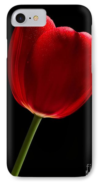 IPhone Case featuring the photograph Photograph Of A Red Tulip On Black I by David Perry Lawrence