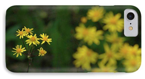 IPhone Case featuring the photograph Pick Me Daisies by LeeAnn McLaneGoetz McLaneGoetzStudioLLCcom