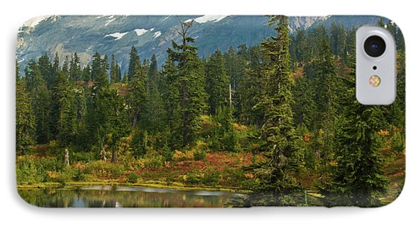 Picture Lake Vista Phone Case by Mike Reid