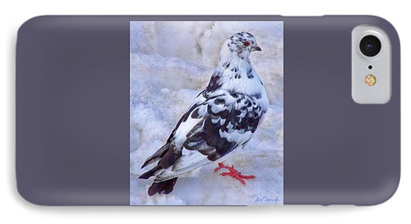 Pigeon On Ice  1 IPhone Case by John Selmer Sr
