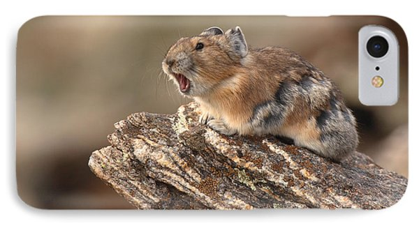 Pika Barking From Rocktop Perch IPhone Case by Max Allen