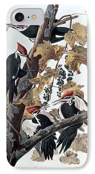 Pileated Woodpeckers Phone Case by John James Audubon
