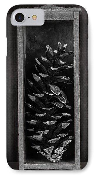 Pine Cone In A Box Still Life IPhone Case by Tom Mc Nemar