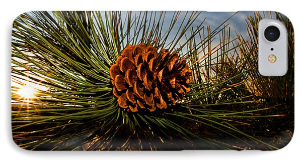 Pine Cone IPhone Case by Terry Elniski