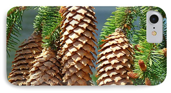 Pine Cones Art Prints Conifer Pine Tree Landscape Baslee Troutman Phone Case by Baslee Troutman