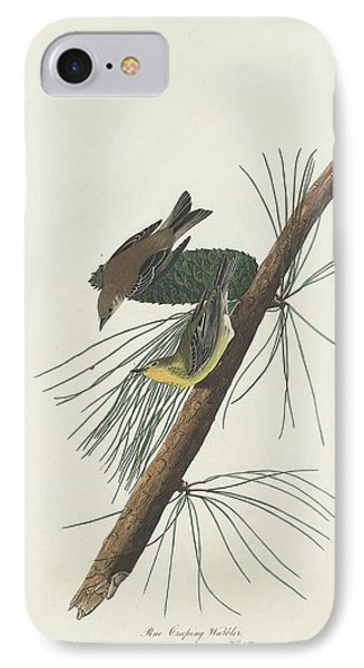 Pine Creeping Warbler IPhone Case by Rob Dreyer