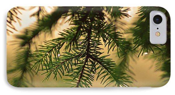 IPhone Case featuring the photograph Pine by Robert Geary