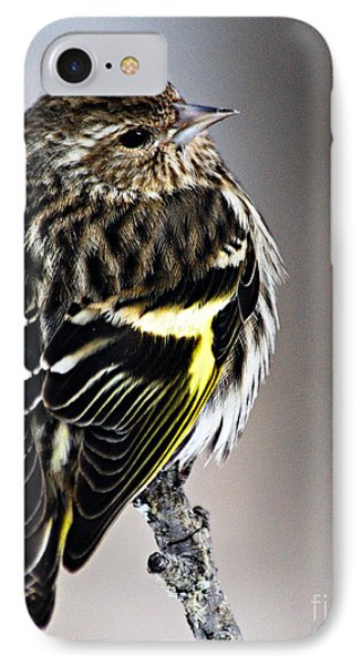 Pine Siskin Phone Case by Larry Ricker