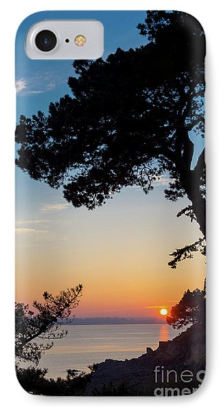 IPhone Case featuring the photograph Pine Tree by Delphimages Photo Creations