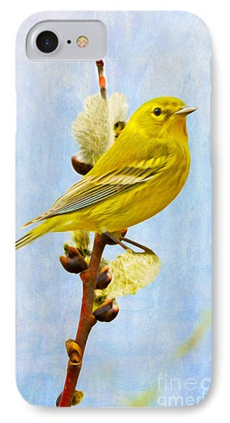 Pine Warbler On Willow Catkin IPhone 7 Case