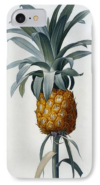 Pineapple IPhone Case by Pierre Joseph Redoute