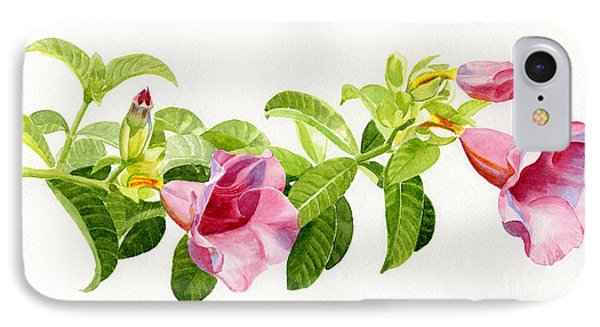 Pink Allamanda Blossoms On A Branch IPhone Case by Sharon Freeman