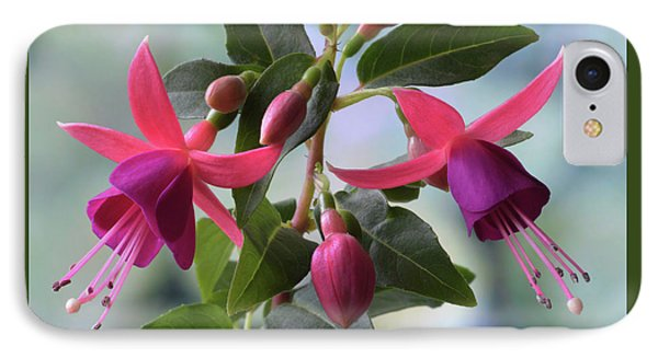 IPhone Case featuring the photograph Pink And Purple Fuchsia by Terence Davis