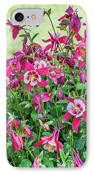 IPhone Case featuring the photograph Pink And White Columbine by Sue Smith