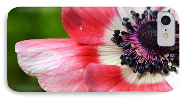 Pink Anemone Flower IPhone Case