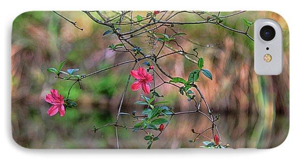 IPhone Case featuring the photograph Pink Azalea Dream by Deborah Benoit