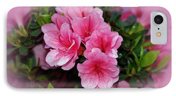 Pink Azaleas Phone Case by Sandy Keeton