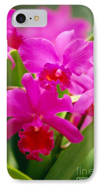 Pink Cattleya Orchids Phone Case by Allan Seiden - Printscapes