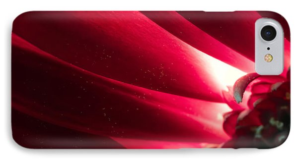 Pink Chrysanthemum Flower Petals  In Macro Canvas Close-up IPhone Case by John Williams
