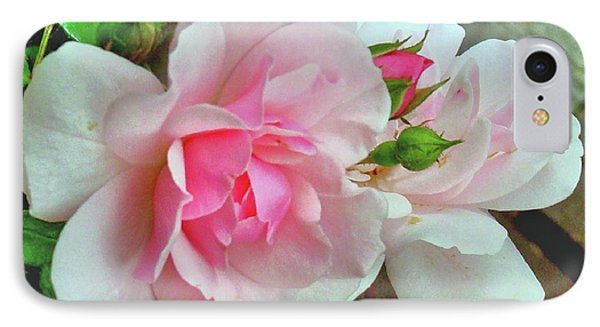 IPhone Case featuring the photograph Pink Cluster Of Roses by Janette Boyd