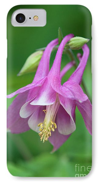 IPhone Case featuring the photograph Pink Columbine - D010096 by Daniel Dempster