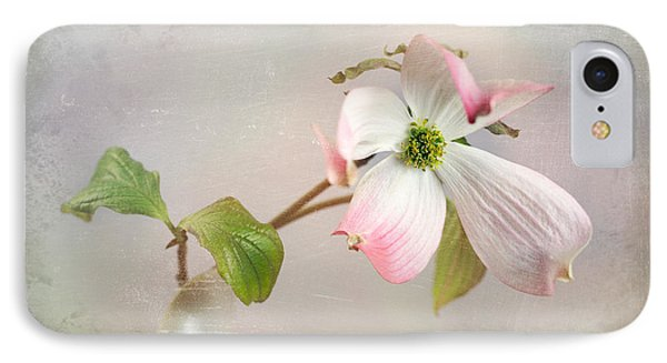 Pink Cornus Kousa Dogwood Blossom IPhone Case by Betty Denise