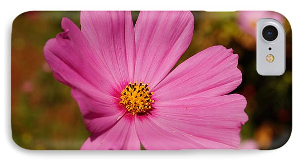 Pink Cosmos IPhone Case by Beth Collins