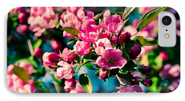 IPhone Case featuring the photograph Pink Crab Apple Flowers by Alexander Senin