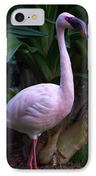 Pink Curiosity Phone Case by Karen Wiles