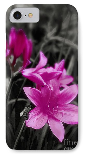 Pink Day Lily IPhone Case by Mindy Sommers