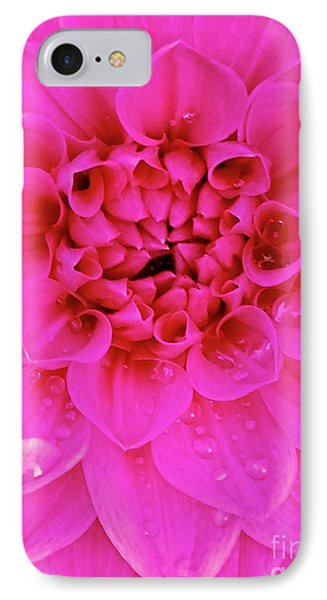 Pink Delight IPhone Case by Cathy Dee Janes