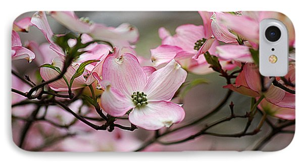 Pink Dogwood 20120415_68a IPhone Case by Tina Hopkins