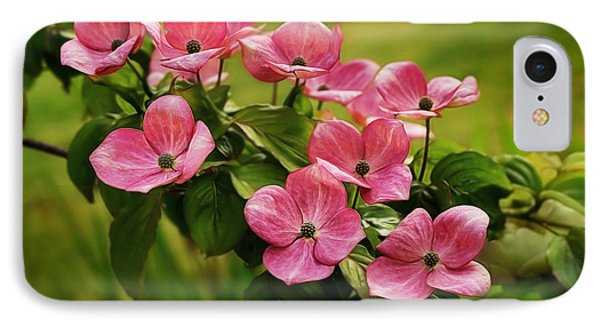 Pink Dogwood Branch IPhone Case by Mary Jo Allen