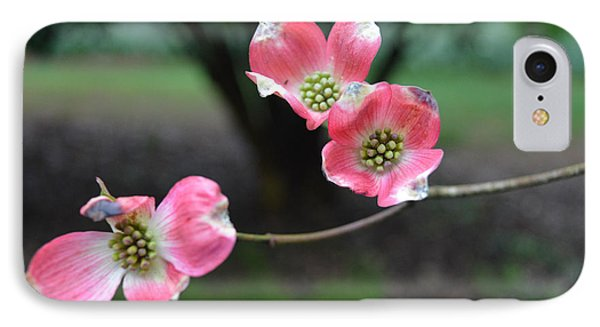 IPhone Case featuring the photograph Pink Dogwood by Linda Geiger