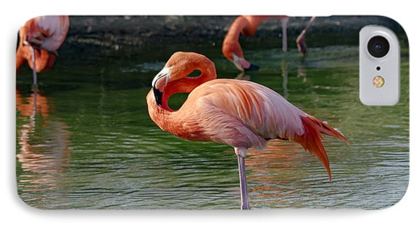 IPhone Case featuring the photograph Pink Flamingo by Scott Carruthers