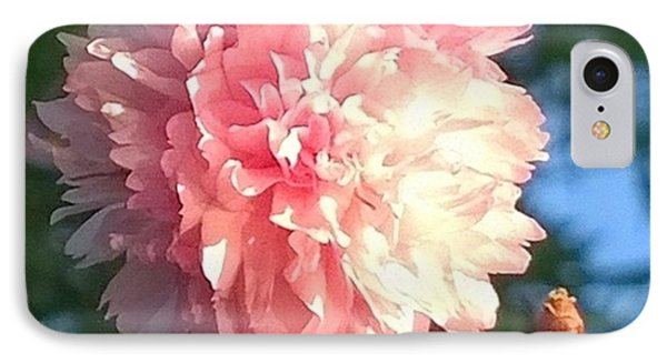 Pink Flower Bloom In Sunset. #flowers IPhone Case