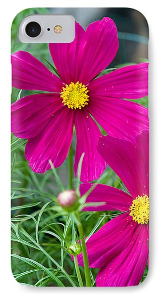 Pink Flower IPhone Case by Michael Bessler