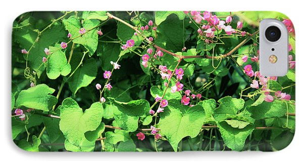 IPhone Case featuring the photograph Pink Flowering Vine2 by Megan Dirsa-DuBois