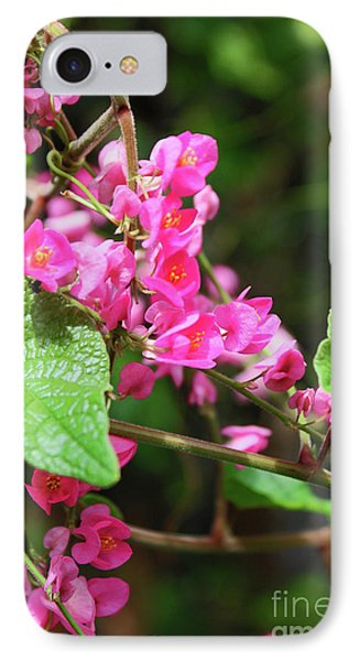 IPhone Case featuring the photograph Pink Flowering Vine3 by Megan Dirsa-DuBois