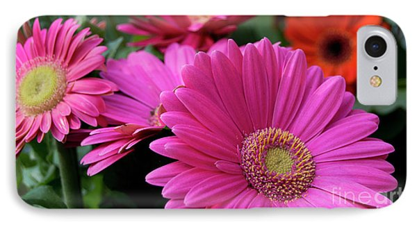 IPhone Case featuring the photograph Pink Flowers by Brian Jones