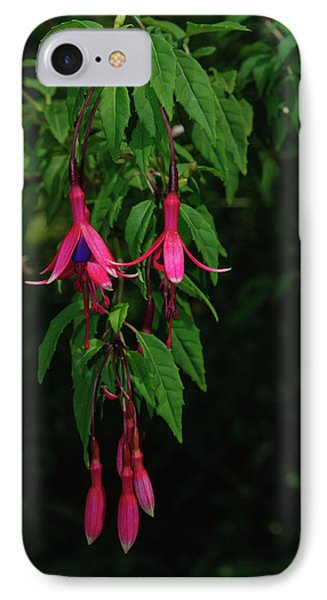 IPhone Case featuring the photograph Pink Fushia by Tikvah's Hope