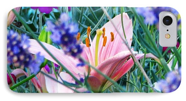 Pink Lily In The Lavender IPhone Case
