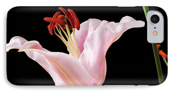 IPhone Case featuring the photograph Pink Oriental Lily With Bright Red Pollen by David Perry Lawrence