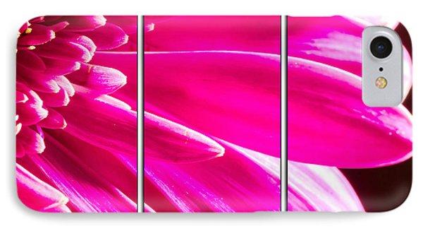Pink Mum Flower Triptych IPhone Case by John Williams