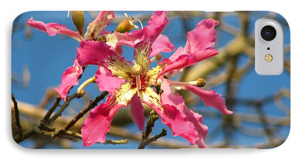 IPhone Case featuring the photograph Pink Orchid Tree by Carla Parris
