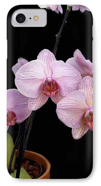 Pink Orchids Phone Case by Kurt Van Wagner