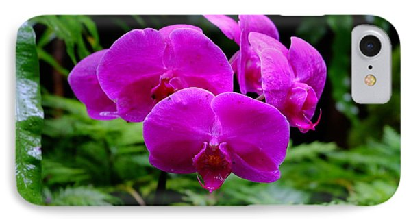 Pink Orchids IPhone Case by Mini Arora