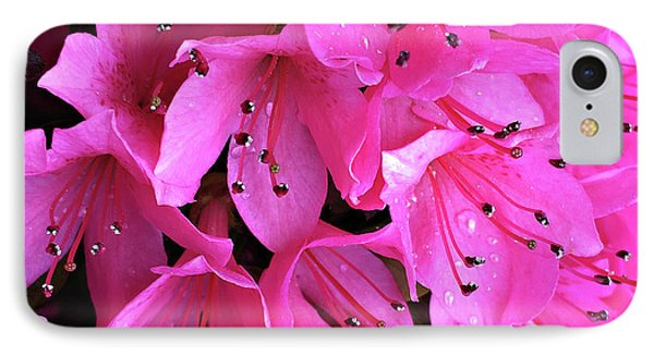 IPhone Case featuring the photograph Pink Passion In The Rain by Sherry Hallemeier